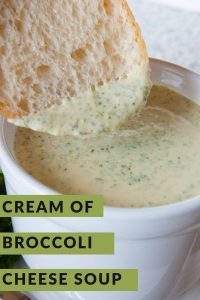 Pinnable image 2 for broc cheese soup.
