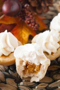 Pinnable image 2 for bs pumpkin pies.