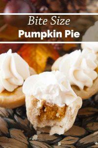 Pinnable image 3 for bs pumpkin pies.