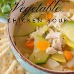 Pinnable image 4 for garden veg soup