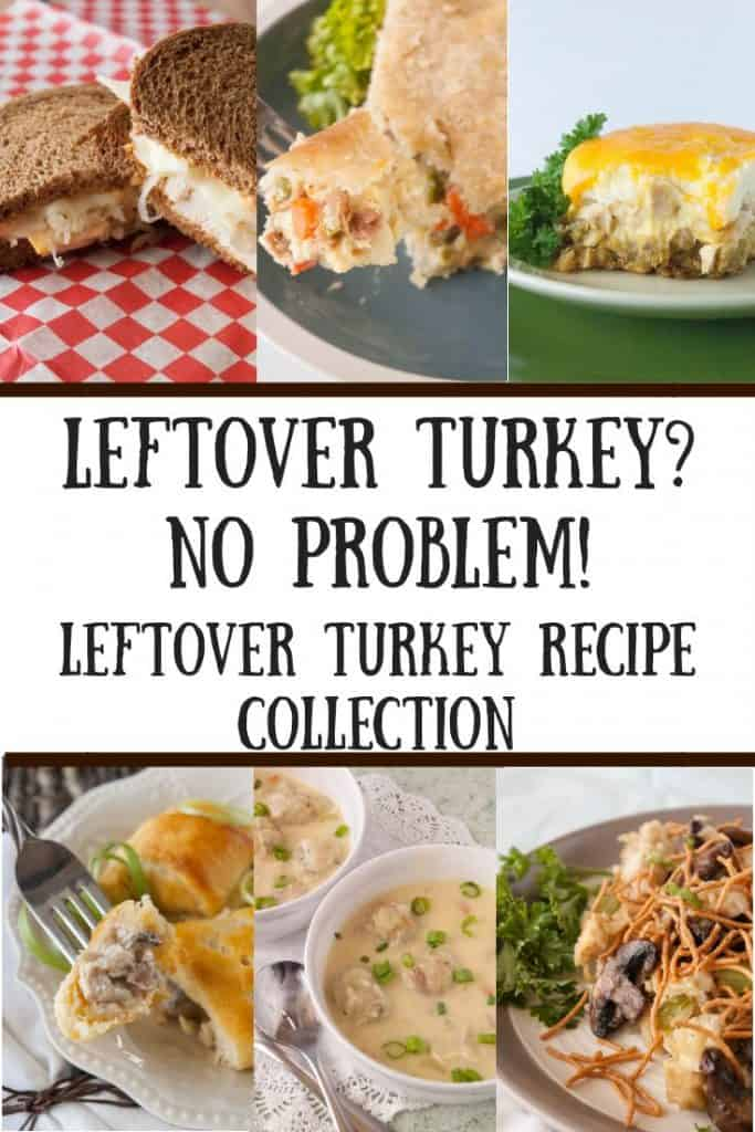 Leftover Turkey Recipe Collection Hero Pic