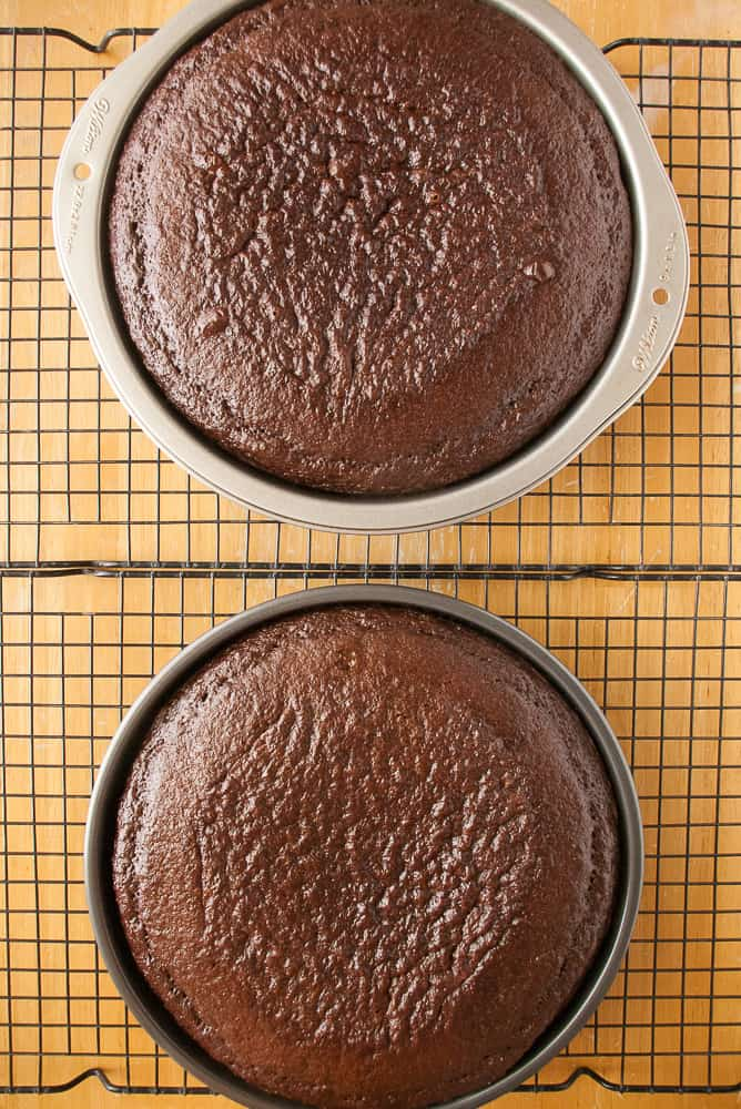 Baked chocolate cake layers.
