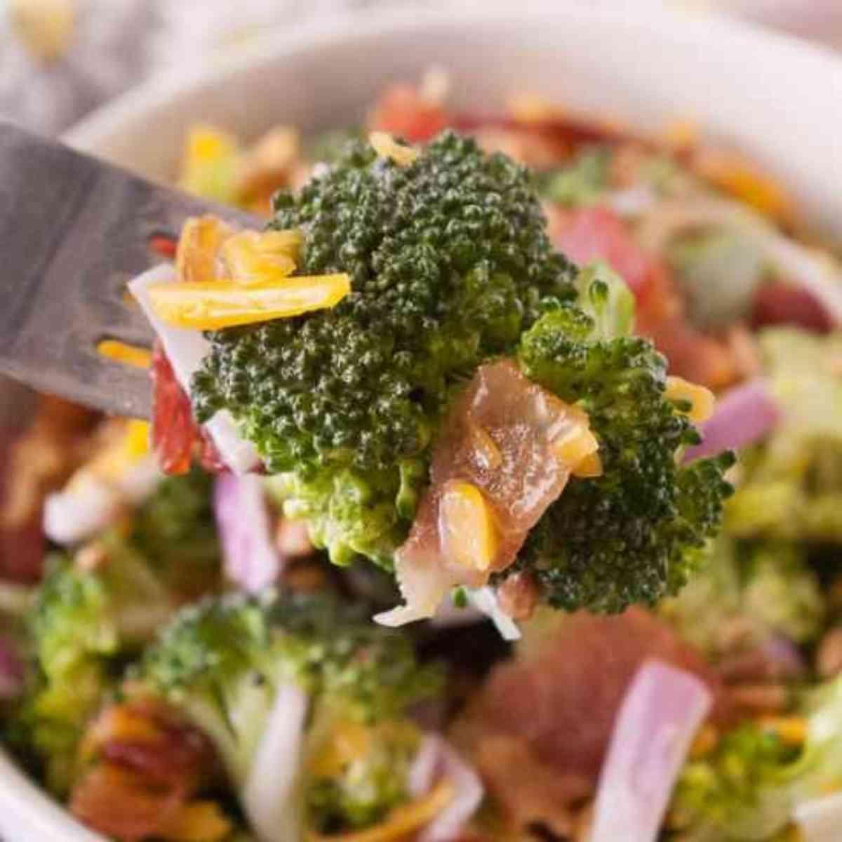 Forkful of broccoli salad