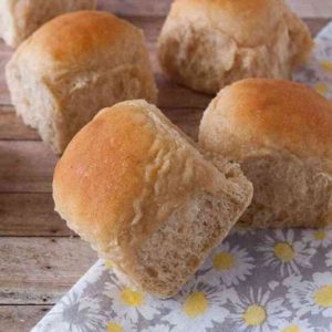 Fresh Whole Wheat Dinner Rolls
