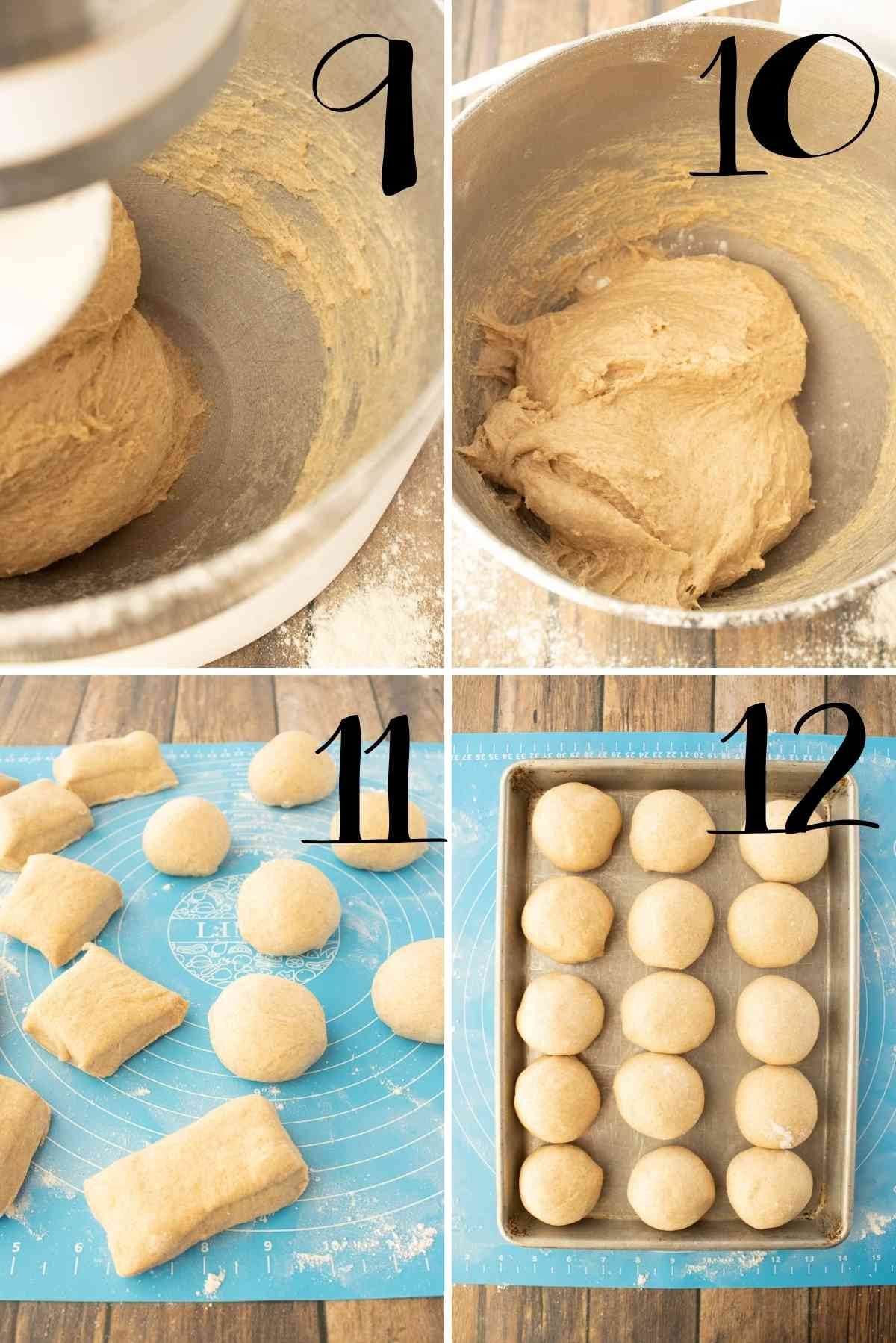 Dough kneaded, left to raise, dumped out divided into pieces and shaped.
