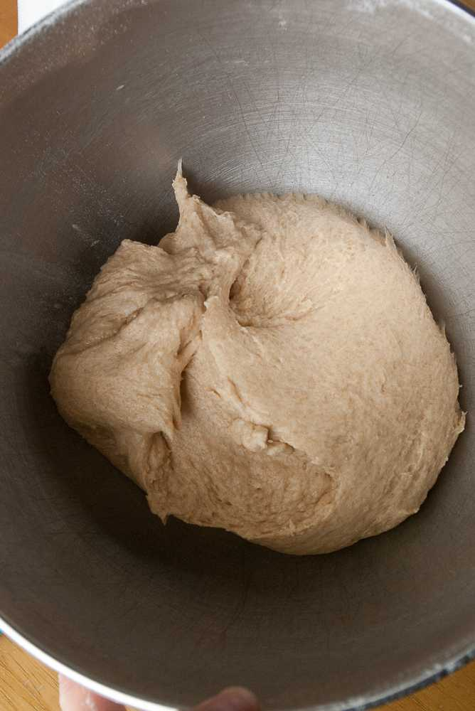 Whole wheat dough in a mixer bowl.