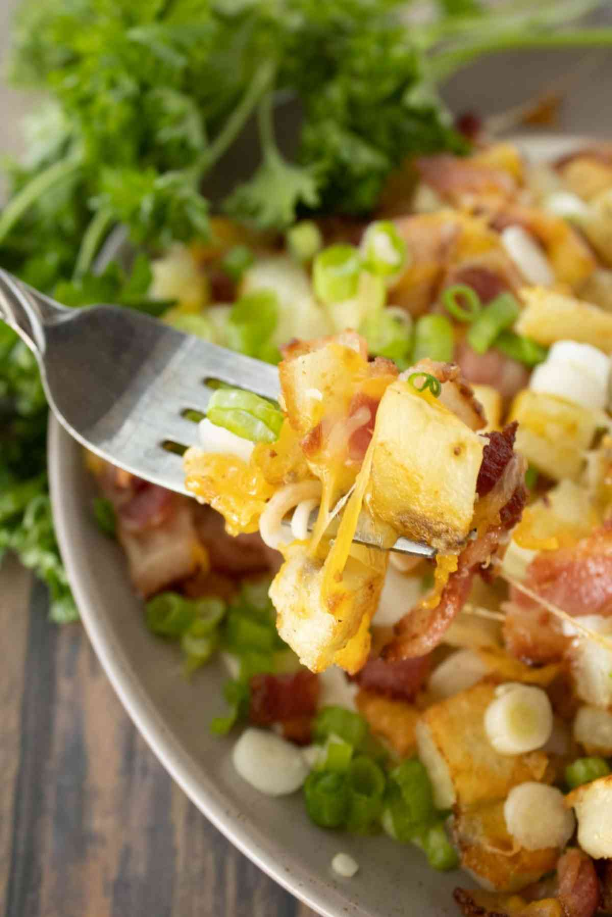Plateful of crispy potatoes covered in bacon, cheese and green onions.