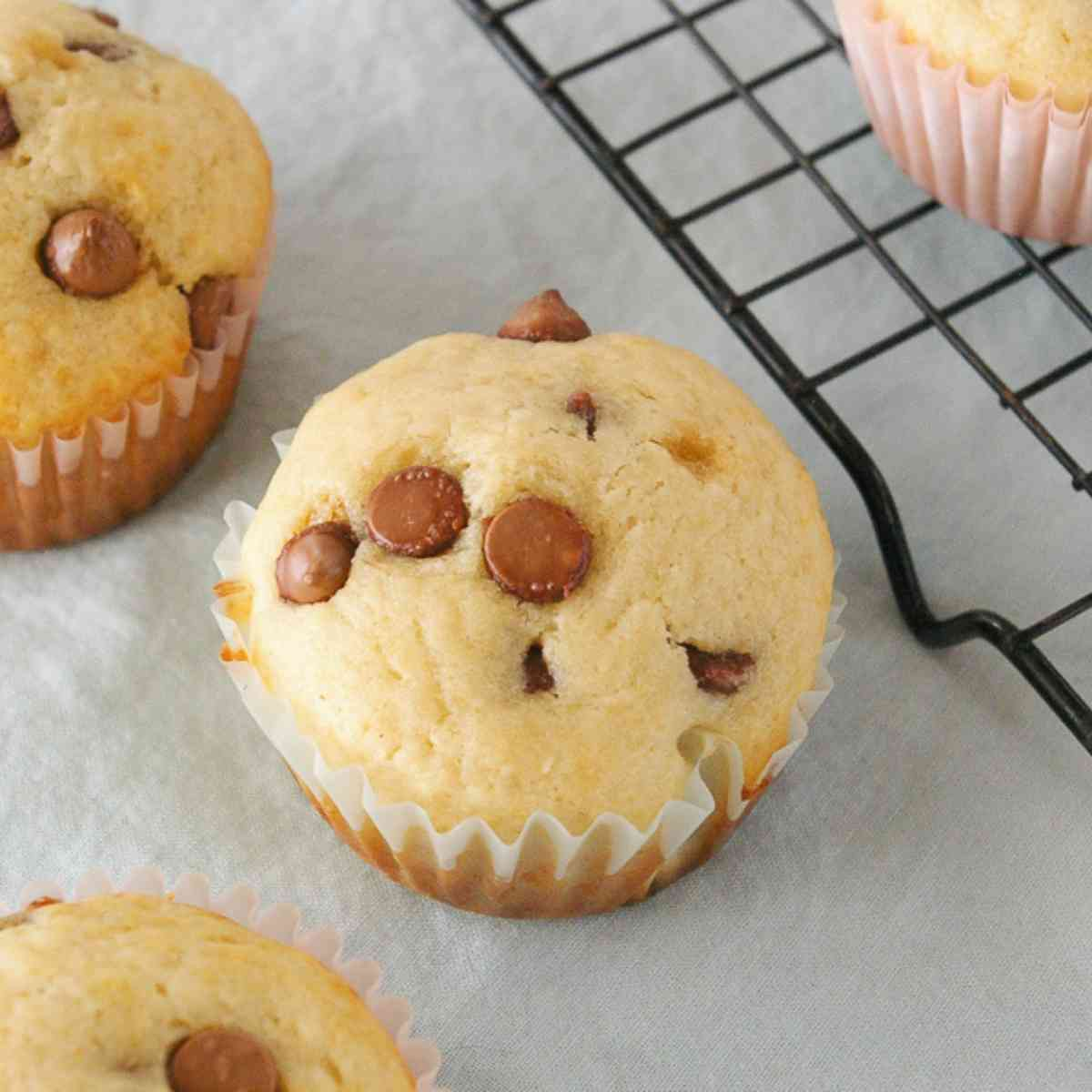 Baked chocolate chip muffins.