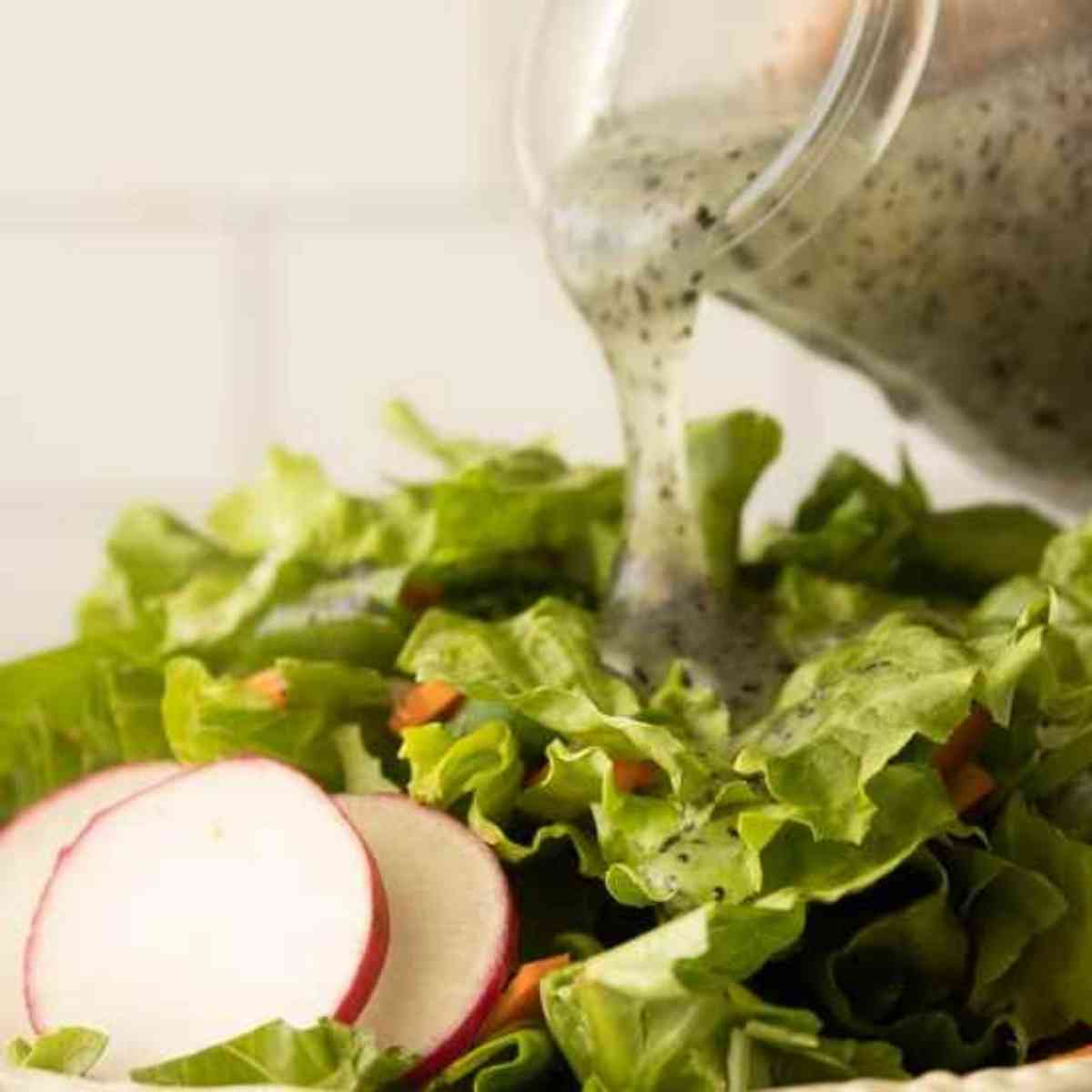 Poppy seed dressing drizzled over green salad.